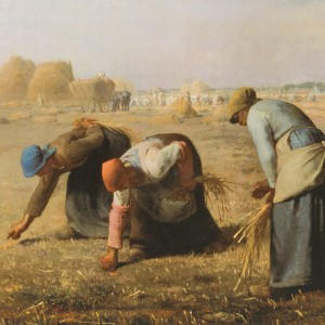 Print S Millet, The Gleaners