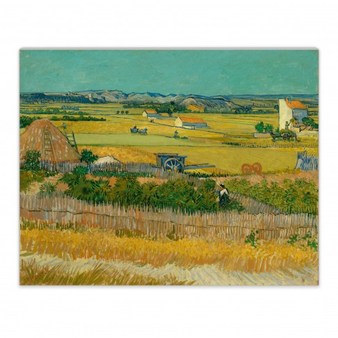 Van Gogh Canvas-S  The Harvest
