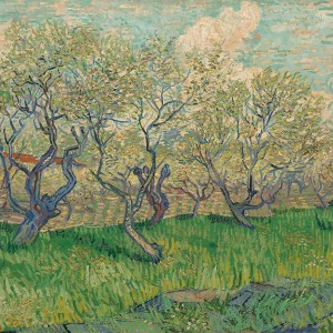 Van Gogh Giclée, Orchard in Blossom