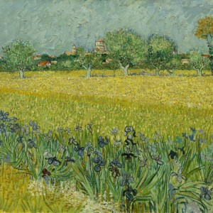 Van Gogh Postcard  Field with flowers near Arles