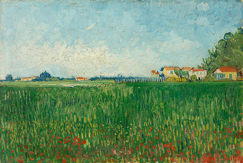 Van Gogh Giclée Field With Poppies Van Gogh Museum Shop