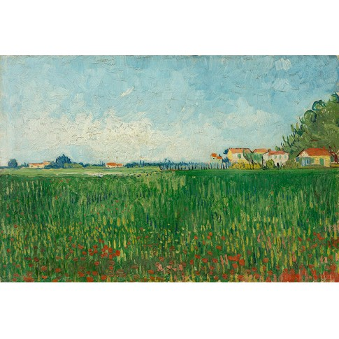 Van Gogh Giclée, Field with Poppies