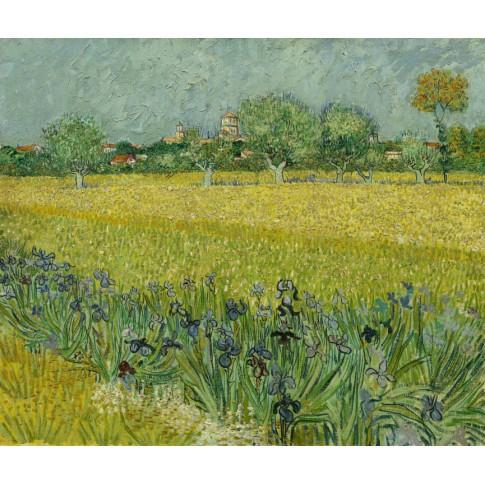 Postcards van gogh museum shop van gogh postcard field with flowers near arles mightylinksfo