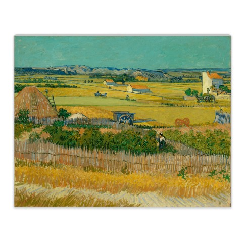 Van Gogh Canvas L The Harvest