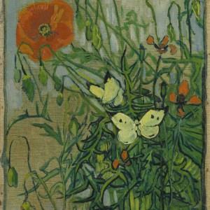 Van Gogh Postcard  Butterflies and Poppies