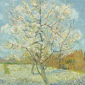 Van Gogh Postcard  The Pink Peach Tree
