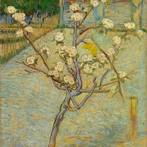 Van Gogh Giclée, Small Pear Tree in Blossom