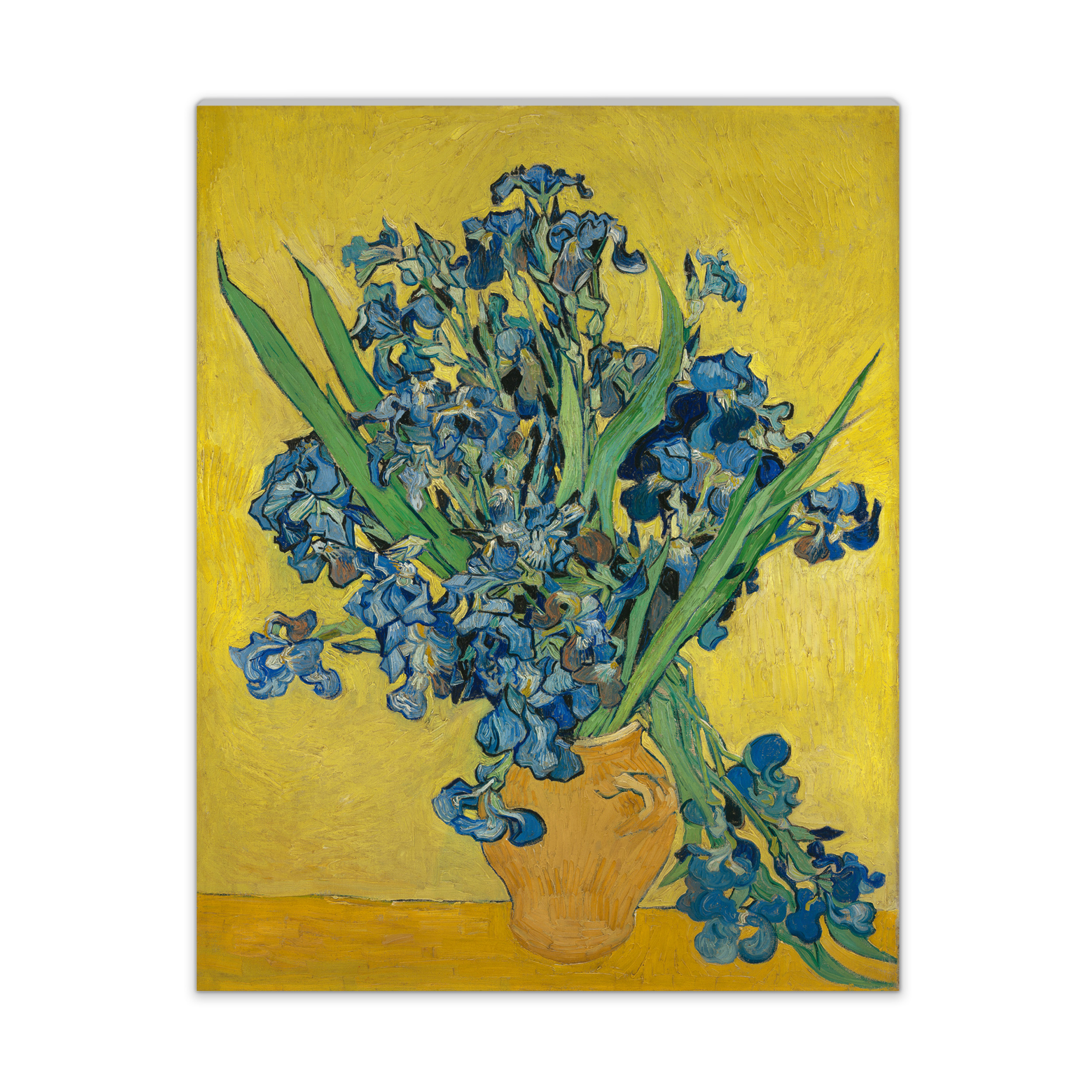 Van gogh canvas s irises van gogh museum shop reviewsmspy