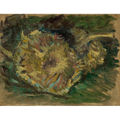 Van Gogh Giclée, Sunflowers Gone to Seed