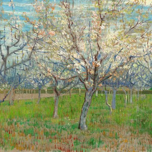 Van Gogh Giclée, The Pink Orchard