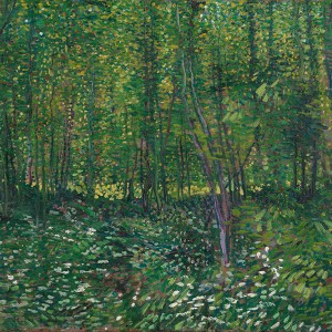 Van Gogh Giclée, Trees and Undergrowth