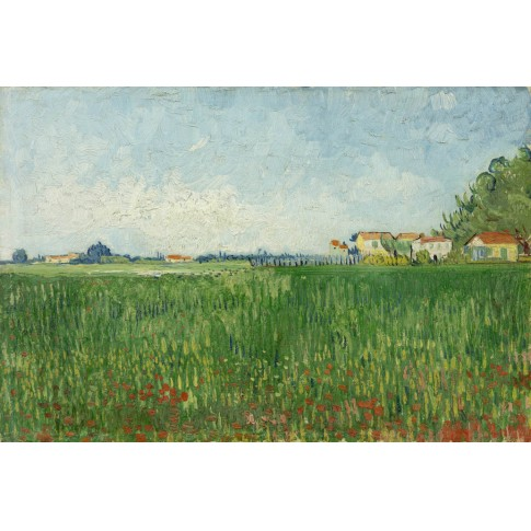 Van Gogh Ansichtkaart  Field with poppies
